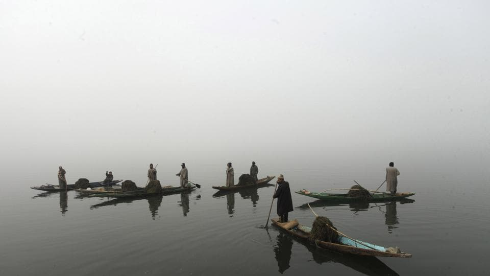 Members of Kashmir's Lakes and Waterways Authority collect weeds lying on the surface of Dal Lake on December 10, 2016.  (Waseem Andrabi/HT Photo)