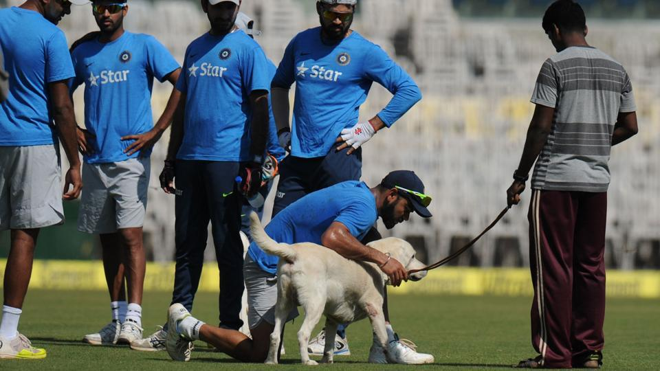 India's captain Virat Kohli plays with a sniffer dog during a training session ahead of the fifth cricket Test match between India and England at the M.A. Chidhambaram stadium in Chennai. (AFP)