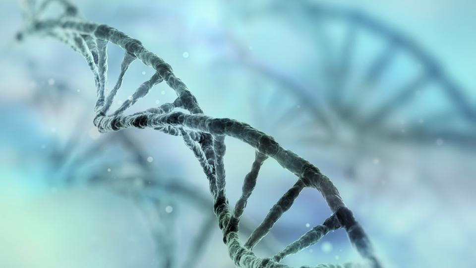 Several gene sequencing projects are coming up across the world that are storing commercially valuable gene sequence information in online databases.