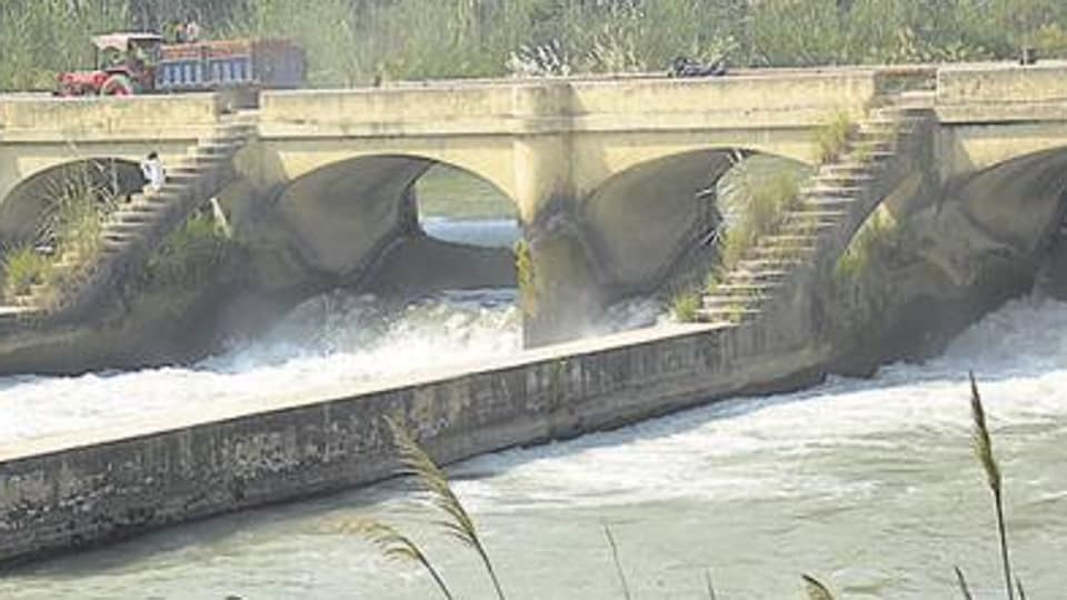 Punjab irrigation department,reclaims 1,250-acre