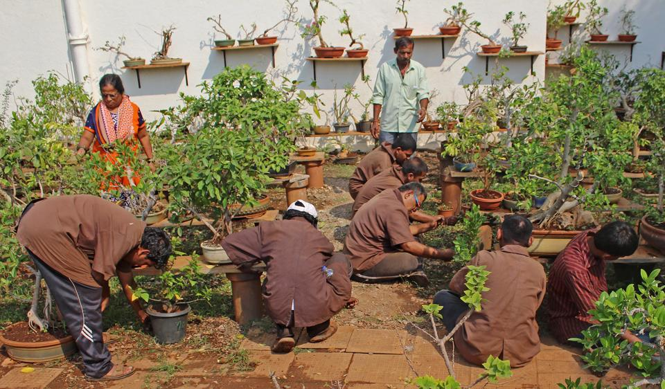 Specially abled people take care of a garden at NASEOH in Chembur, Mumbai, on Friday.