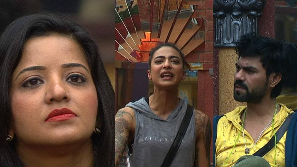 Bani, Monalisa and Gaurav have been nominated for evictions this week.