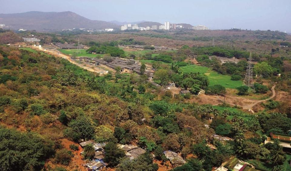 Environment groups Vanashakti and Aarey Conservation Group (ACG) filed a petition, seeking protection of the Aarey landscape and maintaining it as a no-development zone