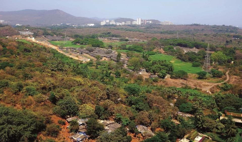 MUMBAI NEWS,MUMBAI,AAREY MILK COLONY