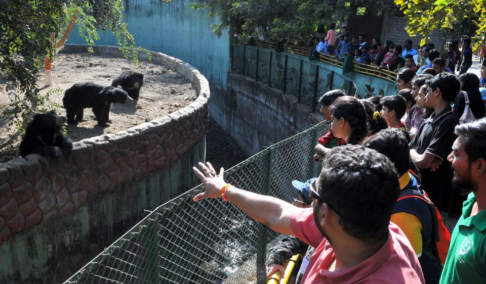 Zoo curator explaining the behaviour of bears to kids during Young Zookeepers' workshop in Indore on Sunday.
