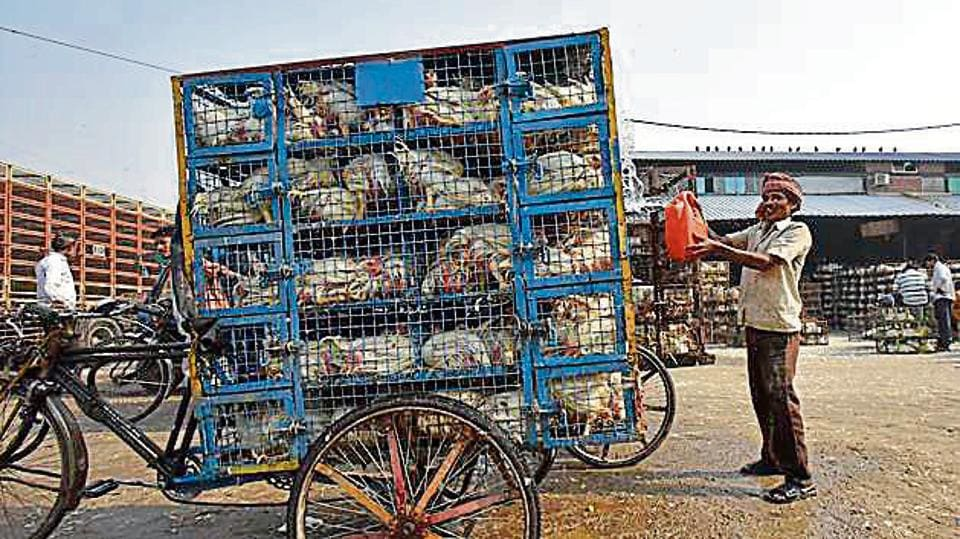 Waste to energy plants,Delhi pollution,Wholesasle markets