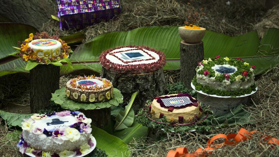 A variety of cakes sit on the floor inside the enclosure of Colo. (AP Photo)