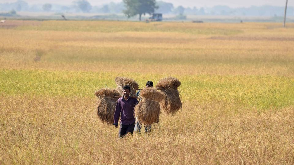 The northeast monsoon failed, with an approximately 90% deficit as of November-end, affecting paddy farmers in Tamil Nadu.