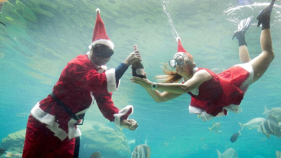 Two workers dressed as Santa Claus gesture as they swim in a fish tank during a show at the South African Marine Biological Research (SAMBR) Sea World n Durban. ( RAJESH JANTILAL / AFP)
