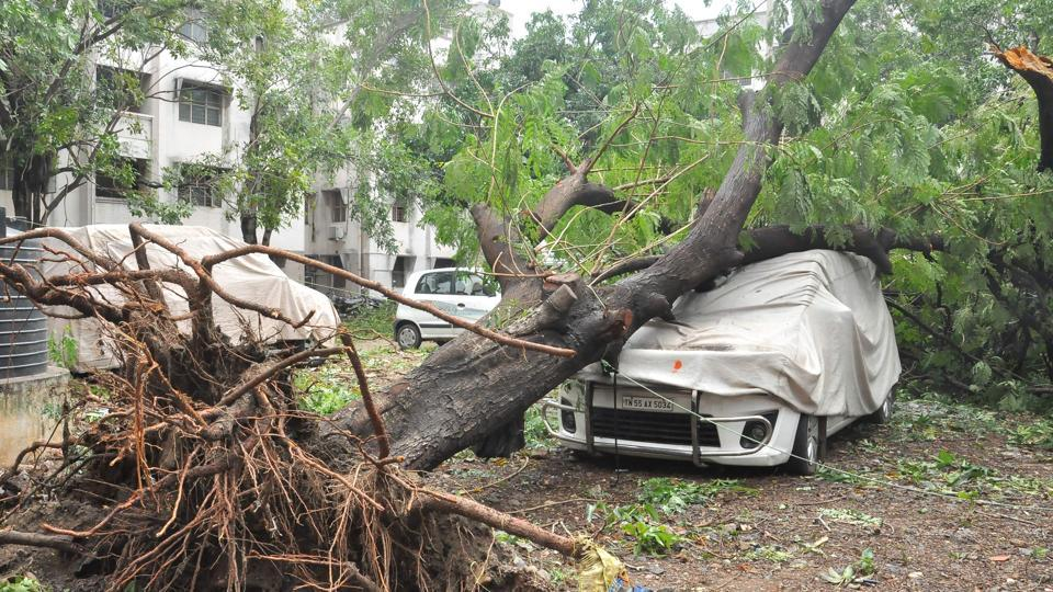 Cyclone Vardah made landfall in Chennai on Dec 12, uprooting trees, defacing high-rises, smashing cars, disrupting public transport and telecommunication, bringing the metropolitan area to a standstill.
