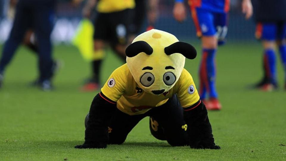 Watford mascot Harry the Hornet dives on the floor at the final whistle mocking Wilfred Zaha of Palace during the Premier League match between Watford and Crystal Palace.