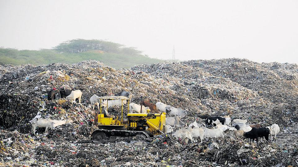 The waste plant is located along the Gurgaon-Faridabad road near the  Asola Sanctuary, considered to be an ecologically significant spot.