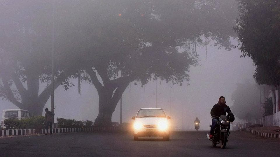 Bhopal: Vehicles move amidst a thick blanket of fog in Bhopal. (PTI)