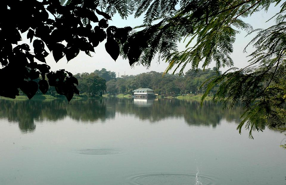 Jayanti Sarovar  in Jamshedpur that teems with migratory birds during the winter months, wears a deserted look as the winged visitors have not  come this January.