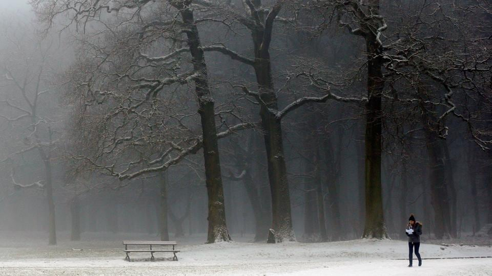 Trees, benches and paths in this park at Brussels, Belgium are frozen under a layer of snow.   (REUTERS)