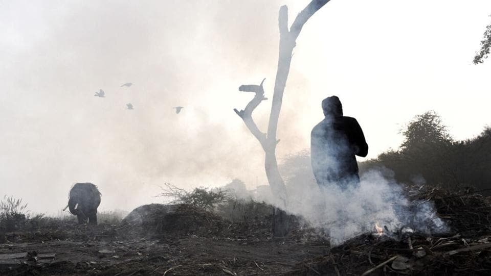 A man stands near burning garbage to warm himself on a foggy winter morning in New Delhi. (Saumya Khandelwal/HT Photo)