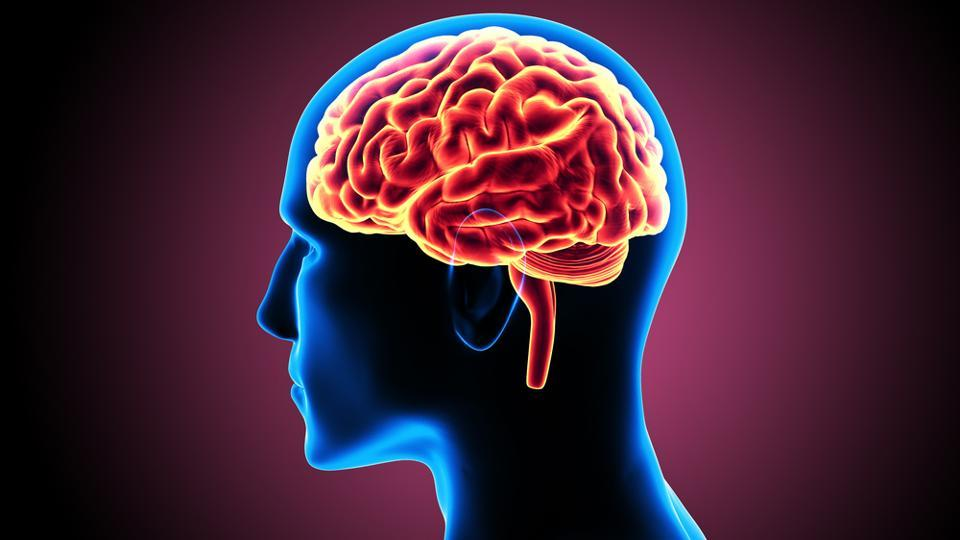 Blood Flow to Brain Linked to Dementia - WebMD