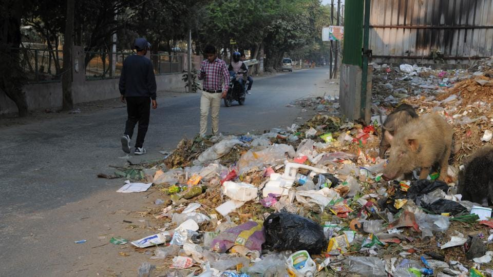 Garbage strewn along a road in Sector 15 part-2 on Wednesday.