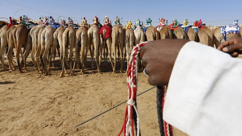 Participants take positions before the race.  This festival offers a week-long celebration of UAE heritage with competitions and activities including bike riding and camping in the desert of Moreeb Dune.  (Karim Sahib/AFP)