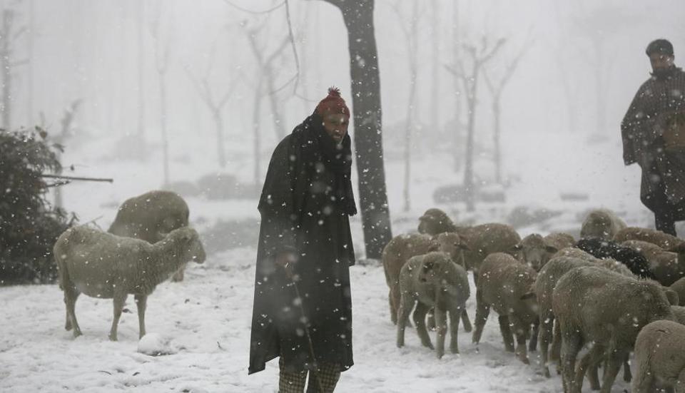 Snowfall in Srinagar,Srinagar,Jammu and Kashmir