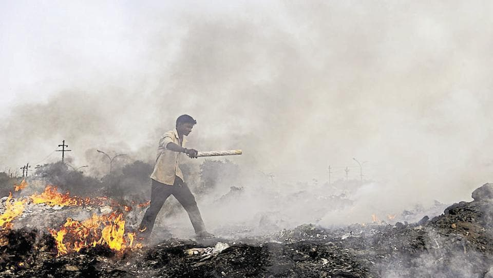 Noida,green tribunal,pollution
