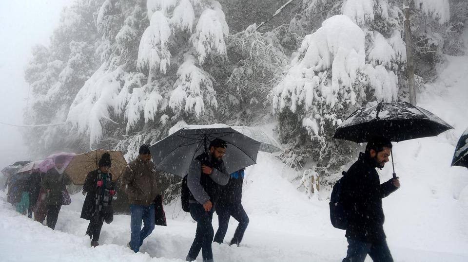 People walk with their umbrellas during heavy snowfall at Lakkar Bazaar-IGMC road. The weather forecast said western disturbances -- storm systems originating from the Caspian Sea in the Central Asia and moving across the Afghanistan-Pakistan region -- would remain active till Sunday with chances of more snow. (Deepak Sansta/HTPhoto)