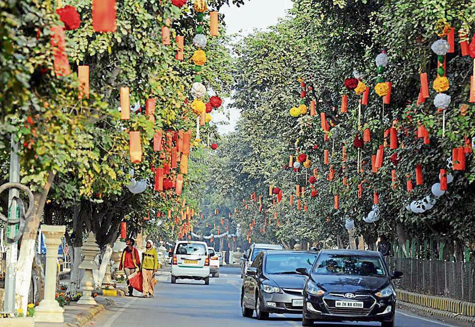 The trees along Sector 29 Road have been decorated with lights.