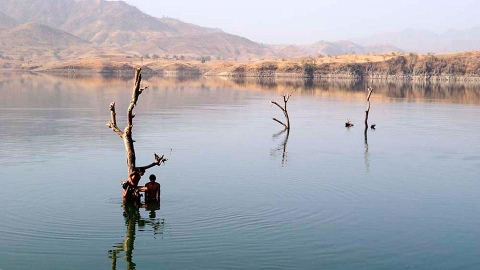 Children playing near a tree still standing on their submerged farms in the Sardar Sarovar reservoir