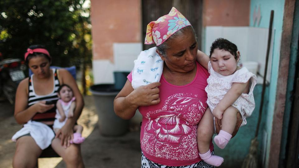 Zika,Brazil,Zika epidemic in Brazil