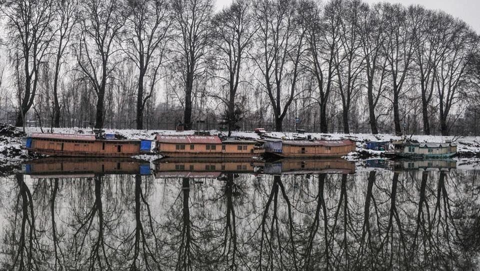 Chinar trees cast a reflection on the Dal Lake in Srinagar. (Waseem Andrabi/HTPhoto)