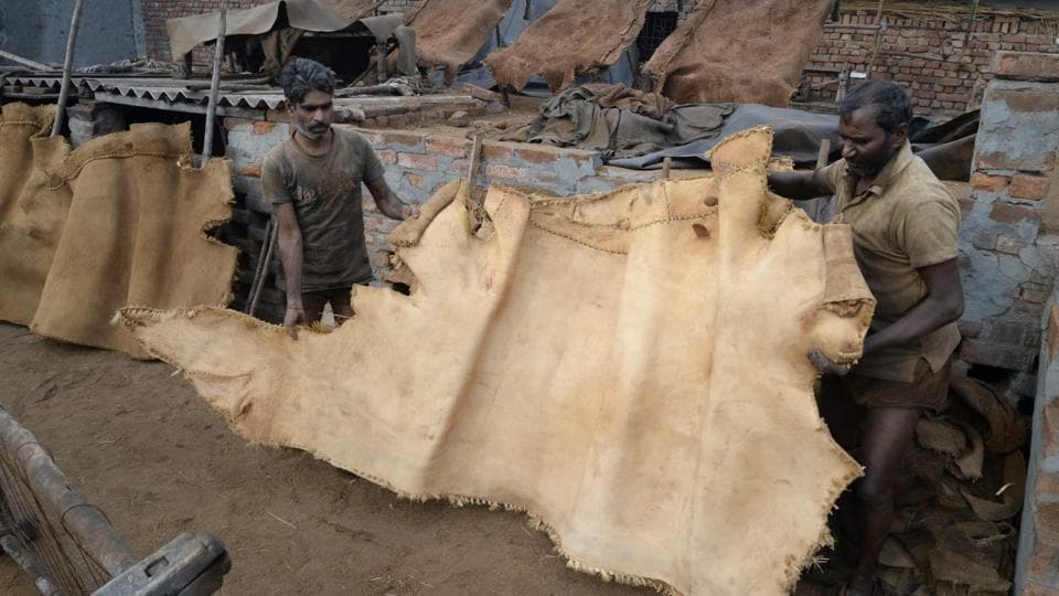 Workers treat a piece of animal hide at one of Jalandhar's last remaining tannery units.