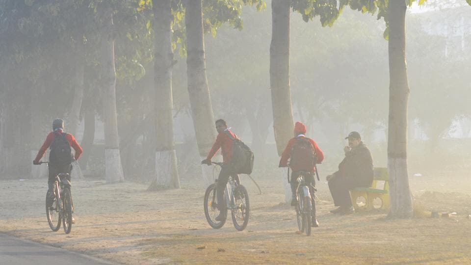 Students on their way to school on a cold Foggy weather at Punjab Agricultural University (PAU) in Ludhiana, Punjab. (Gurminder Singh/ht photo)