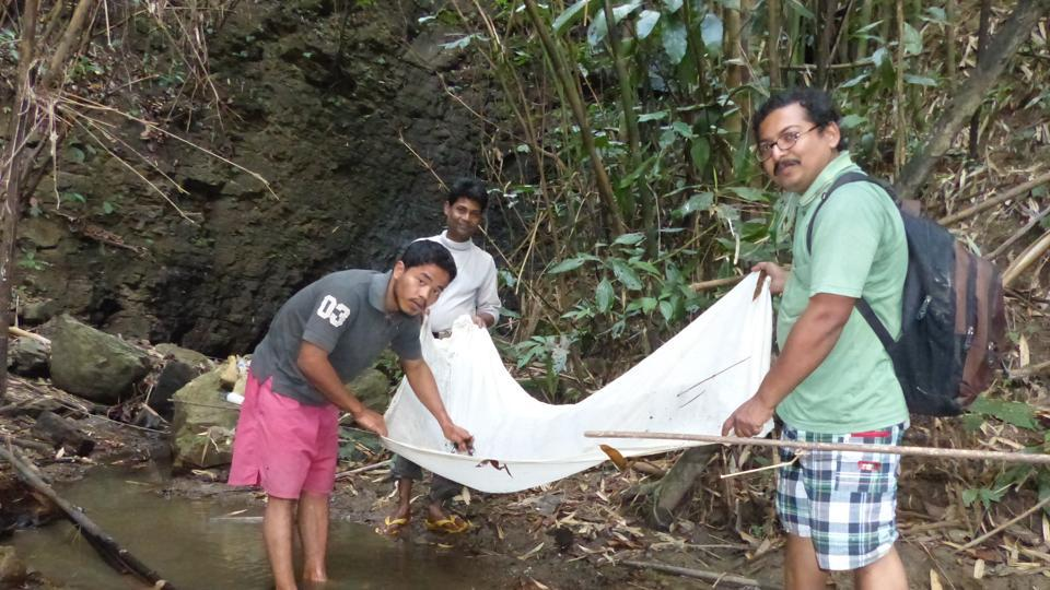 ZSI scientist Santanu Mitra (right) catching crabs with tribal youths of Mizoram.
