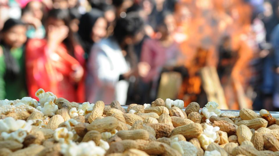 Close-up of peanuts during Lohri celebration at MCM College, Sector 36 in Chandigarh on Friday. (Anil Dayal/HT Photo)