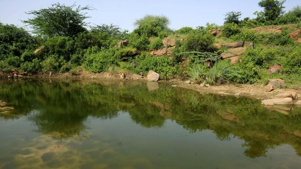 Ghata jheel,Gurgaon,water