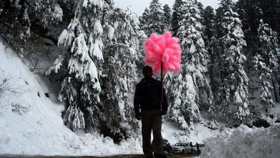 A candyfloss seller walks past snow covered trees  at Kufri, Shimla on Tuesday. (Deepak Sansta  / HT Photo)