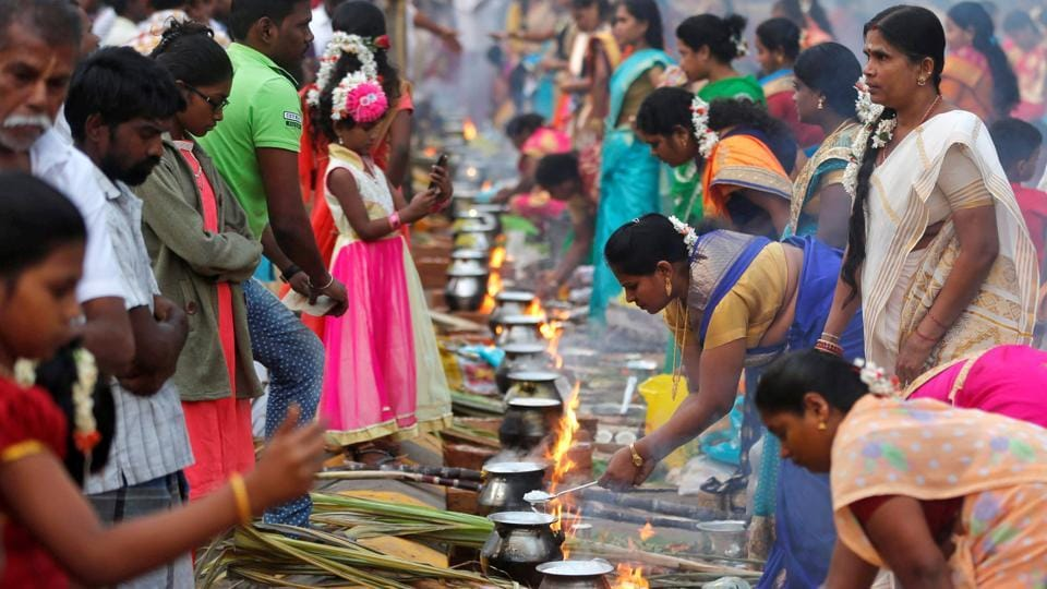 Devotees prepare rice dishes to offer to the Hindu Sun God as they attend Pongal celebrations early morning in Mumbai on Saturday. (REUTERS)
