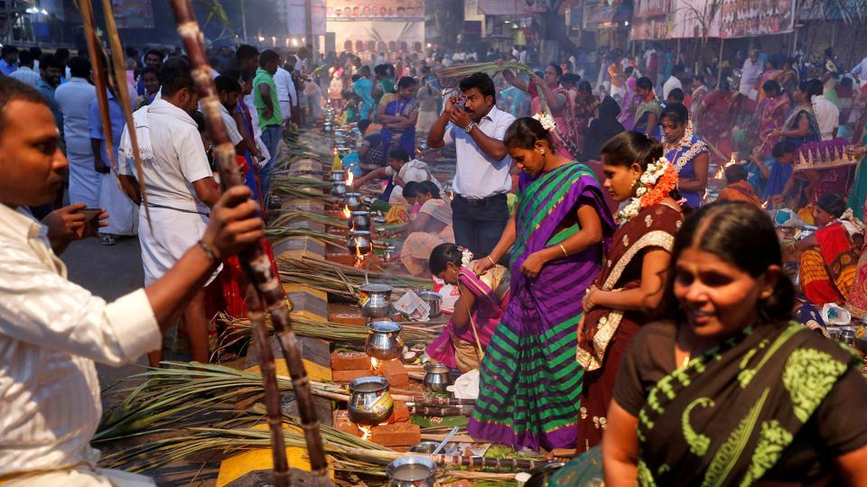Devotees prepare pongal to offer to the Hindu Sun God as they attend Pongal celebrations early morning in Mumbai. (REUTERS)