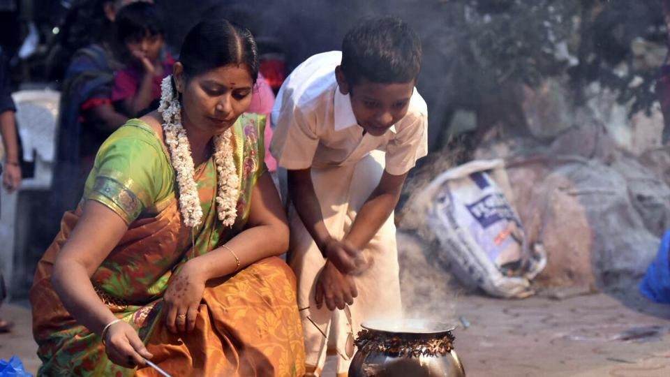 Devotees prepare a traditional sweet dish on open fires during an event marking Pongal festival at Dharavi in Mumbai on Saturday. (Kunal Patil / HT Photo)
