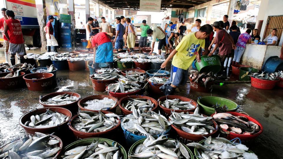 Various fish are placed in buckets to be sold at a wet market in Navotas fish port, metro Manila, Philippines.