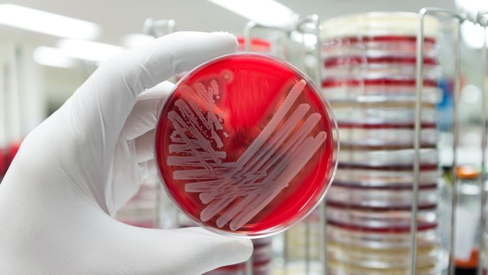 Superbug infection,US Centers for Disease Control,Indian hospitals