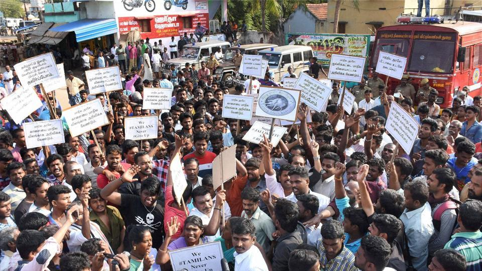 People stage a protest against Jallikattu ban at Alanganallur in Madurai.