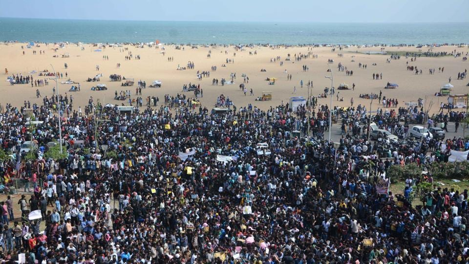Thousands of people staged demonstrations against a ban on the bull-taming sport Jallikattu at Chennai's Marina Beach on Wednesday.  (V. Srinivasulu / Ht photo)
