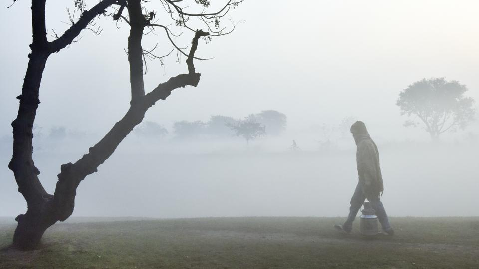 A milkman walks through fields during  on a cold  foggy morning in New Delhi. (Ravi Choudhary/HT PHOTO)