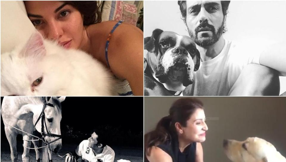 Some adorable pictures of the stars with their four-legged friends