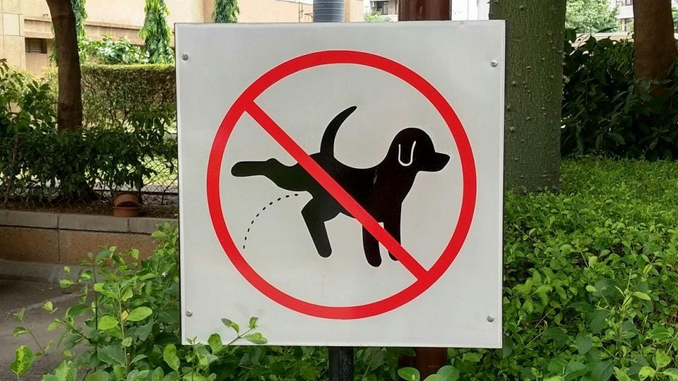 A signboard at Vipul Belmonte complex in Sector 53 directs pet owners not to allow dogs to relieve in open areas.