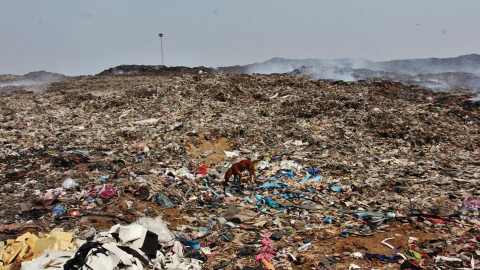 3,000 metric tonnes of garbage are dumped at the Deonar ground daily.