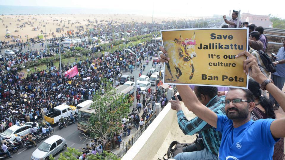 Jallikattu protests,Marina Beach protests,Pongal