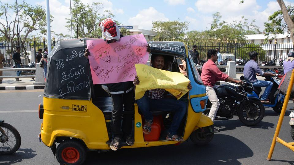 Protesters flock to Chennai's Marina Beach to demand that the Supreme Court ban on Jallikattu be revoked.