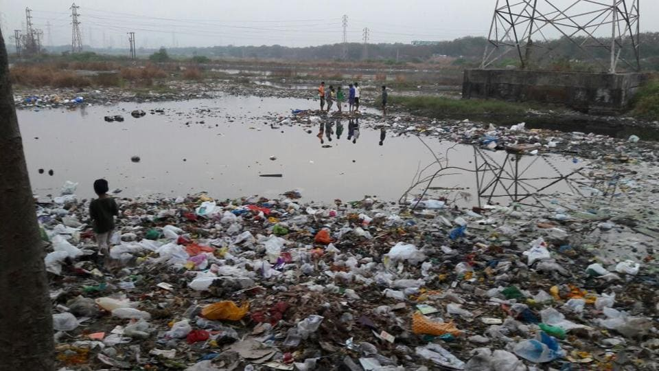Garbage accumulated on one of the lakes.